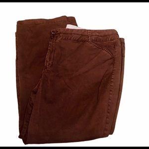 Lane Bryant brown pants